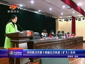 20150131 邵阳新闻联播