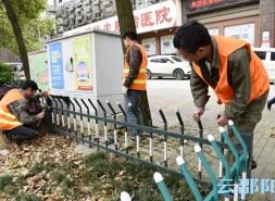 邵陽城區綠化帶維護 讓城市變得更美