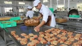 隆回返乡打工仔2000万创办豆腐产业园