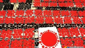 武冈扶冲:制作直径一米的大米花