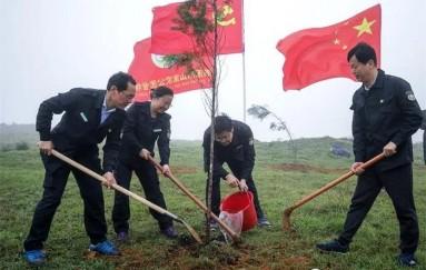 湖南南山国家公园管理局开展植树