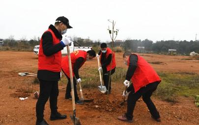 邵阳市检察院开展义务植树活动